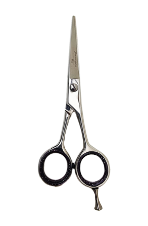 Paragon 5 Inch Scissor (HS-1202). Hair Salon Cutting Scissors. Stainless Steel.